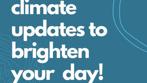 Climate updates to Brighten Your Day!