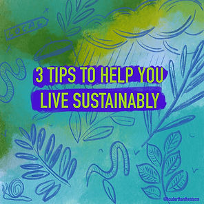 3 tips to help you live sustainably