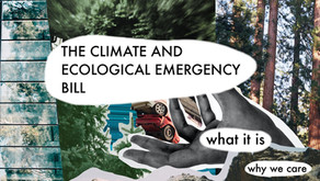 The Climate and Ecological Emergency Bill: What it is, why you should care, and what you can do.