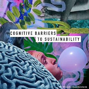 Why do we care, but not act? Exploring cognitive barriers to sustainability