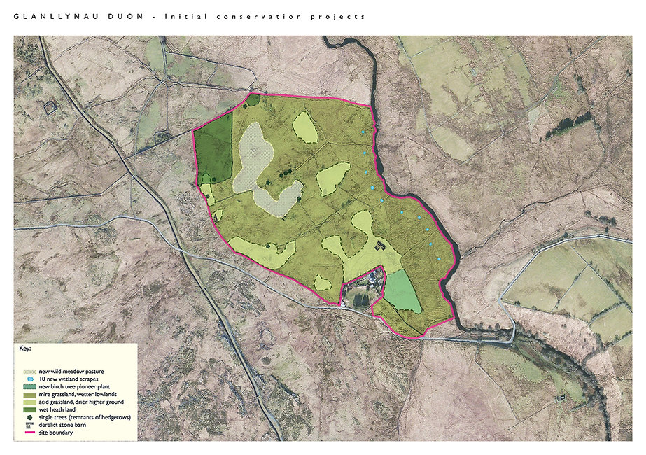 Glanllynau Duon Map Proposed.jpg
