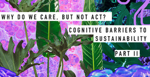 Why do we care, but not act? Cognitive barriers to Sustainability (Part II)