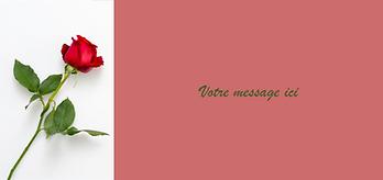 n°6 rose rouge.png