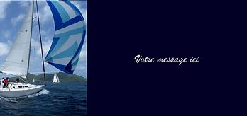 n°13 bateau bleu marine.png