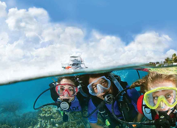copy of PADI Open Water Dive Course