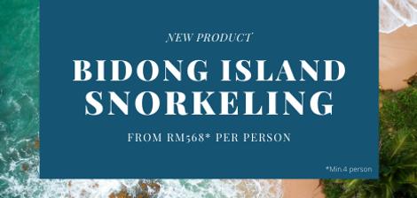 Bidong Island Snorkeling Package.png