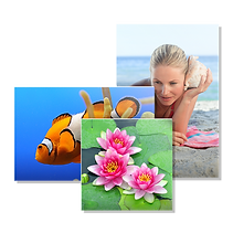 Imprimez les photos de votre smartphone, appareil photo ou ordinateur et tablette....