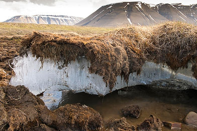 Permafrost melting in the arctic region