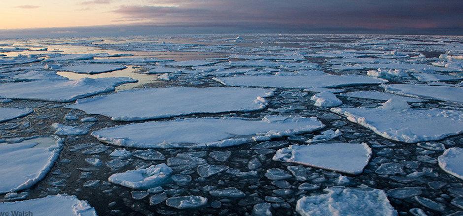 MG_4766-arctic_sea_ice20090914_crop_dave
