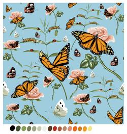 monarchSwanplant_01_v04