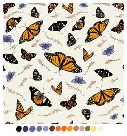 butterflyMix_01_v04