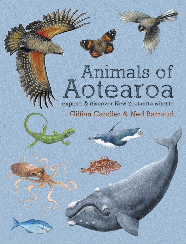 animals of aotearoa