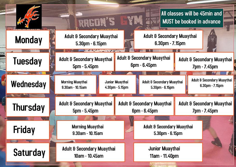 Dragons temp timetable.jpg