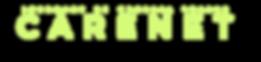 Logo IoMT.png