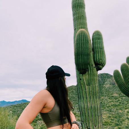 Arizona, 2019