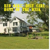 The Best of Care, The Worst of Care - OLM best and worst homes of the week