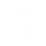 police_icon_white.74734f8c.png