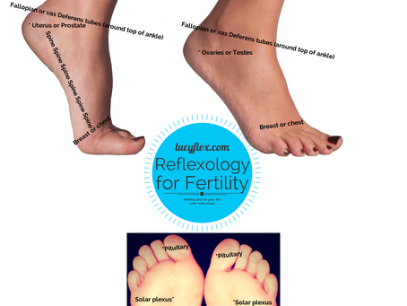 Fertile grounds for reflexology