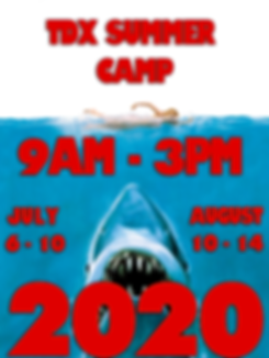 Summercamp2020JAWS.png