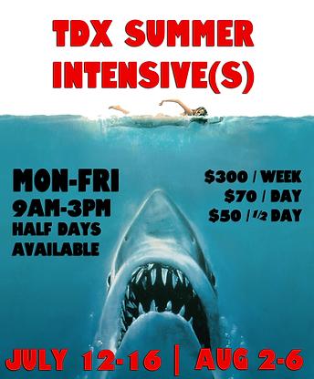 TDX Summercamp 2021.png