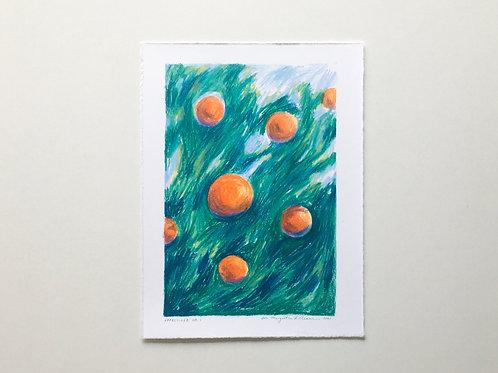 "Original drawing: ""Appelsiner No. 1"""