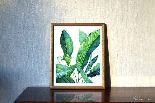 'Evergreen Peace' Large Art Print (30 x 40 cm)