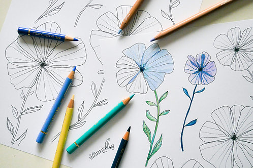 Colouring sheet 'Flowers' / Digital download