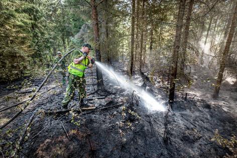 Skogsbränder i Värmland, Hemvärnstidningen 2019.