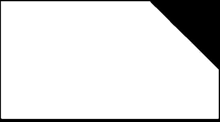 Прозрачный фон для сайта_edited.png