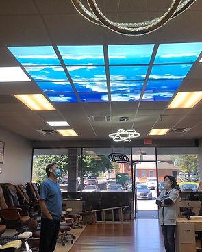 ceiling murals.jpeg