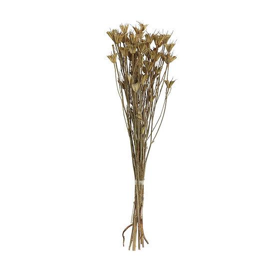 Mist Dried Bouquet