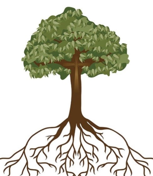 Rooted Cropped.jpg