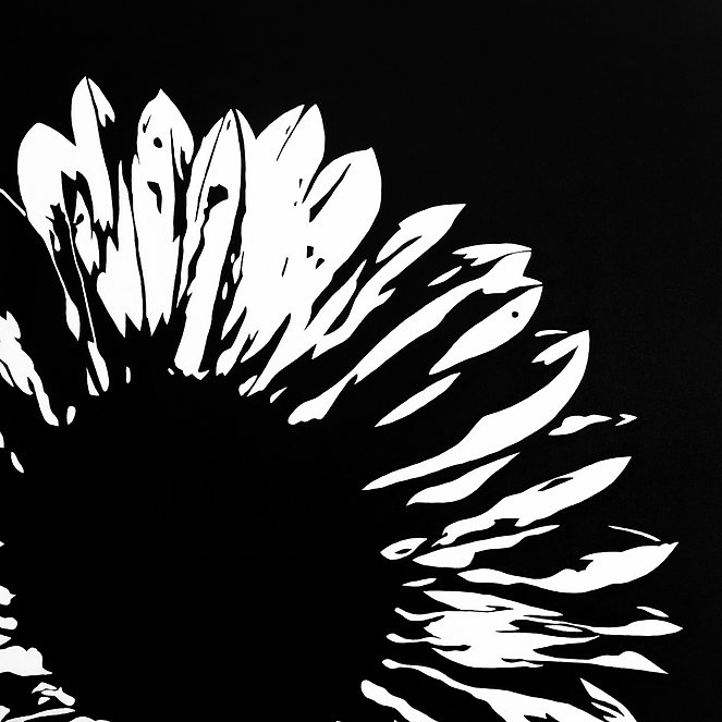 LAUREN-BLACK-SUNFLOWER_edited.jpg