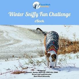 Winter SFC eBook WIX.jpg