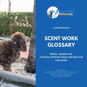 A Comprehensive Scent Work Glossary