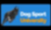 DSU New Logo Banner.png