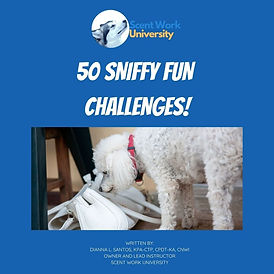 50 Sniffy Fun Challenges eBook Image Cor