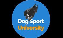 DSU Circle Logo.png
