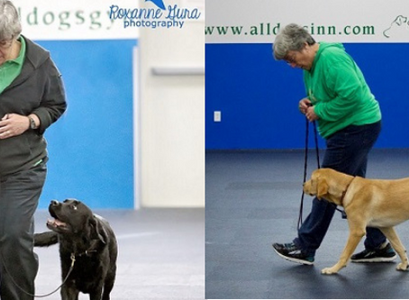 The Sport Your Dog Would Choose...CDSP!