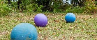 Treibball Program Banner.jpg