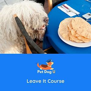 Leave It Course.jpg