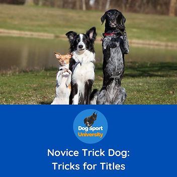 Novice Trick Dog.jpg
