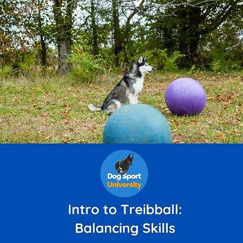 Intro to Treibball Balancing.jpg
