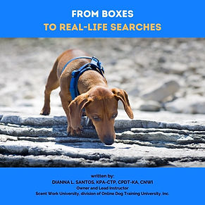 From Boxes to Real Life Searches eBook