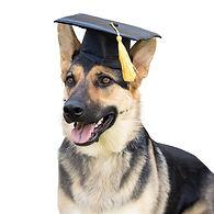 C.LA.S.S. PhD Prep