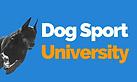 DSU Banner Logo PNG.png