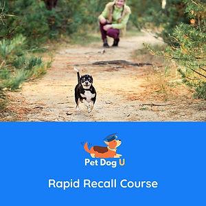 Rapid Recall Course.jpg