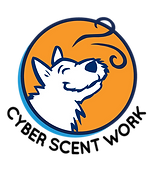 CSW Name and Head Logo.png