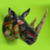 Rhino trois-quarts 2b.jpg