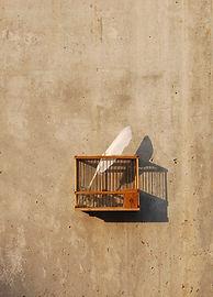 CDR2-Encajarte-AlexMonfort_poema2_Censur